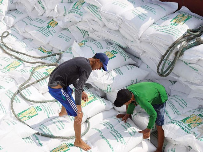 Quy trình phân bổ 80.000 tấn gạo trong EVFTA