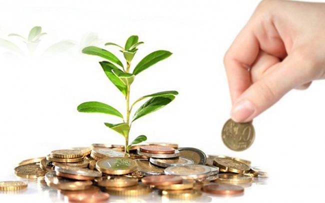Tin học Viễn thông Petrolimex chia cổ tức gần 35% bằng tiền