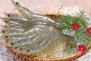 Thực phẩm Sao Ta góp 180 tỷ đồng lập doanh nghiệp thủy sản, nông sản