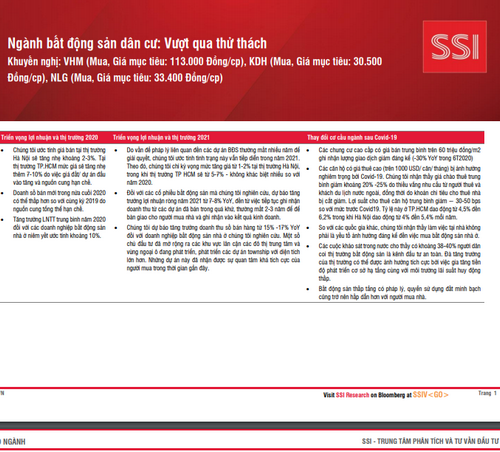 SSI Research: Ngành bất động sản dân cư - Vượt qua thử thách