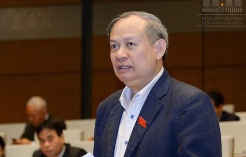 Ông Đinh Xuân Thảo: 'Lịch sử Quốc hội chưa từng có tiền lệ đại biểu mang 2 quốc tịch'