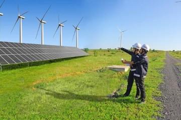 Fecon tiếp tục trúng thầu 2 dự án điện gió tại Sóc Trăng, giá trị 434 tỷ đồng