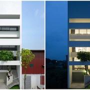 Vườn tre xếp tầng trong ngôi nhà ở Bắc Ninh