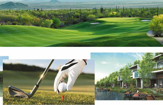 Vingroup rút khỏi dự án sân golf, khu nghỉ dưỡng cao cấp ở Quảng Ninh