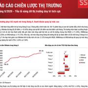 SSI Research: Báo cáo chiến lược tháng 9/2020 - Yếu tố nâng đỡ thị trường duy trì tích cực