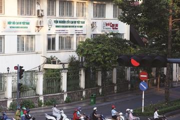 Tập đoàn Cao su sắp chi 2.400 tỷ đồng trả cổ tức năm 2019