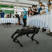 Robot trí tuệ nhân tạo 'lên ngôi' trong dịch Covid-19