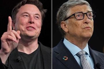 Elon Musk chê Bill Gates 'không biết gì về xe tải điện'