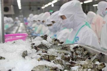 12 công ty Việt Nam được xuất khẩu thủy sản vào Saudi Arabia trở lại