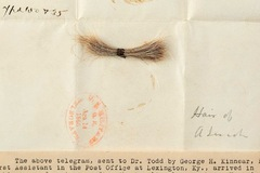 Lọn tóc của cố tổng thống Mỹ Abraham Lincoln được bán với giá hơn 81.000 USD