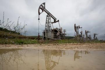 Kỳ vọng gì vào cuộc họp của OPEC+ ngày 17/9