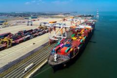 Đề xuất đầu tư 6.425 tỷ đồng xây 2 bến tại cảng Lạch Huyện, Hải Phòng