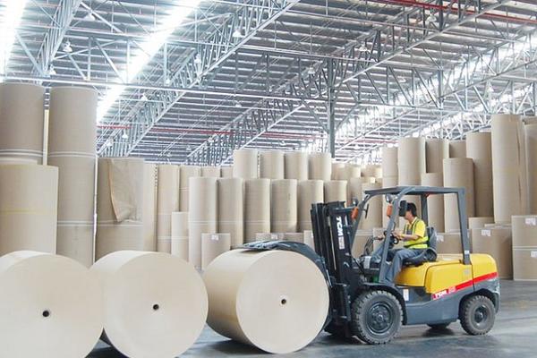 VCSC: Đông Hải Bến Tre lãi ròng 201 tỷ đồng sau 8 tháng, tăng 224%