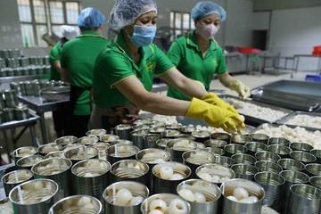 Đẩy nhanh tiến độ kiểm dịch trái cây xuất khẩu vào thị trường Mỹ