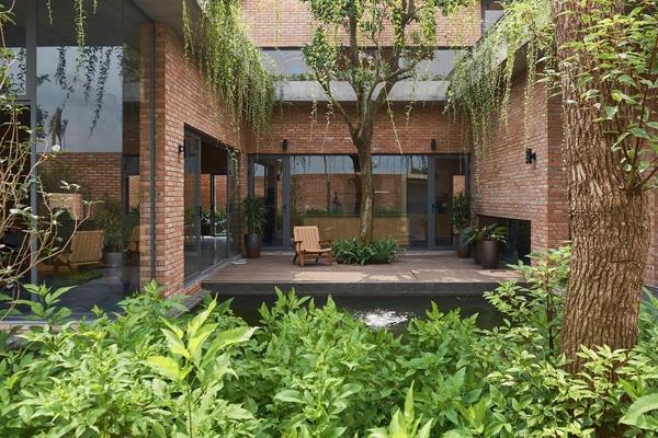 Ngôi nhà với cây phủ xanh quanh năm của cặp vợ chồng già ở Quảng Ninh