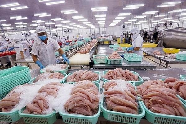 Xuất khẩu tôm sang EU dự báo lạc quan