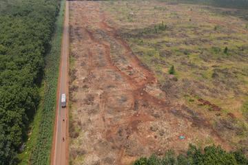 Thanh lý hơn 1.100 ha cây cao su tạo lập mặt bằng sân bay Long Thành