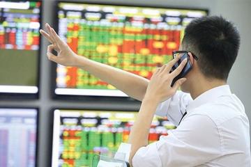 Đợt đánh giá lại bộ 3 chỉ số sàn HoSE: Các quỹ ETF sẽ mua bán ra sao?