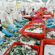 Xuất khẩu thủy sản có quý tăng đầu tiên nhưng vẫn chưa thoát được khủng hoảng