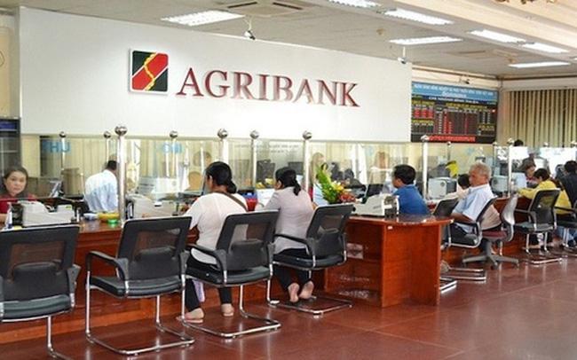 Ngân hàng phát mãi cả thuốc bảo vệ thực vật để thu hồi nợ