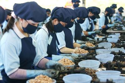 Tập đoàn PAN chào mua 15% vốn CTCP Khử trùng Việt Nam