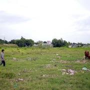 TP HCM thí điểm cho xây dựng tạm trên đất nông nghiệp