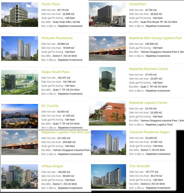 Temasek – Quỹ đầu tư hàng đầu khu vực với hàng tỷ USD rót vào VinHomes, VNG và thị trường bất động sản Việt Nam - Ảnh 5.