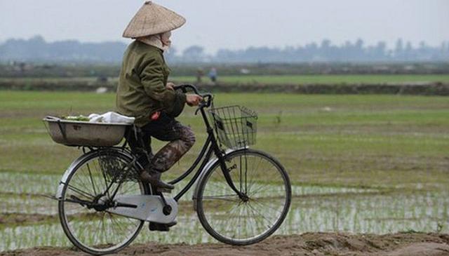 Ông Trần Hồng Hà: Sớm có quy định khuyến khích tập trung, tích tụ đất đai cho sản xuất nông nghiệp