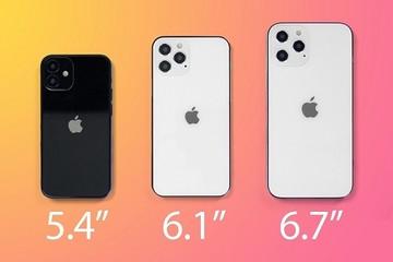 iPhone 12 6.1 inch dự kiến sẽ bán chạy nhất nhờ giá tốt