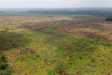 Đồng Nai bàn giao 2.600 ha mặt bằng dự án sân bay Long Thành giai đoạn 1