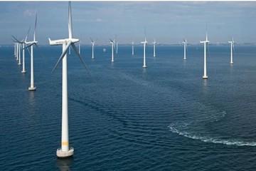 Bình Định đồng ý cho Tập đoàn PNE PG lắp cột gió khảo sát nguồn điện