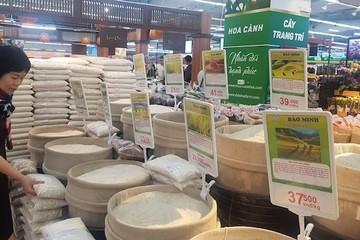 Giá gạo xuất khẩu của Việt Nam lại vượt Thái Lan 30USD/tấn