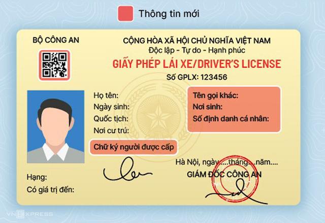 Mẫu mới và các 11 hạng giấy phép lái xe mới Bộ Công an đề xuất. Đồ họa: Việt Chung - Bá Đô.