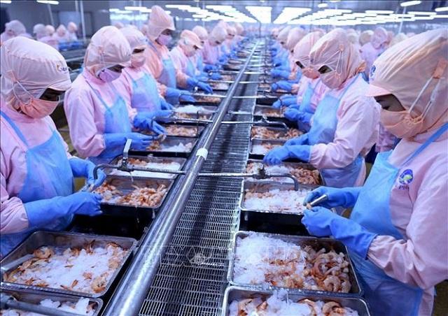 Công ty mẹ Minh Phú báo lãi giảm trong 9 tháng. Ảnh: BDT.