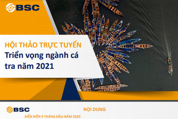 BSC: Triển vọng ngành cá tra năm 2021