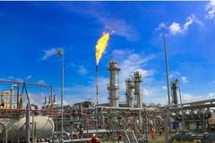 PV Gas đang đề xuất phương án chia cổ tức cổ phiếu 20%