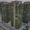 <p> Tuy nhiên, các tòa nhà đã gặp rắc rối vì quá nhiều muỗi.</p>