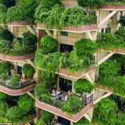 Hơn 800 căn hộ trong 'thiên đường sinh thái' khổ vì cây xanh