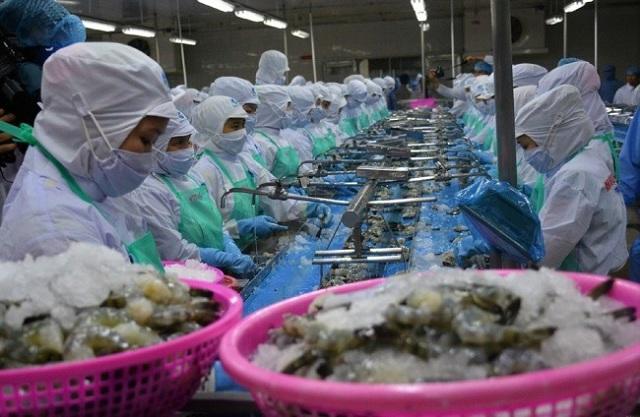 VASEP: Xuất khẩu tôm Việt Nam sang Nhật Bản quý III giảm