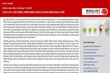 VDSC: Chiến lược đầu tư tháng 11 - Tích lũy cổ phiếu trên nền tảng vĩ mô dần hồi phục