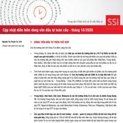 SSI Research: Cập nhật diễn biến dòng vốn đầu tư toàn cầu tháng 10/2020