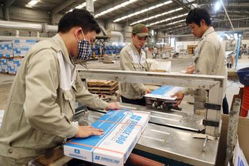 Nhóm Hòa Bình Minh gom 17% vốn CVT, cổ phiếu tiếp tục tăng trần