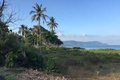 Xuất hiện nhiều nghi vấn quanh 2 hồ sơ đấu giá khu đất 8 ha tại Côn Đảo
