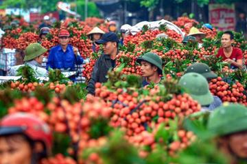 5 nhóm ngành, mặt hàng giúp Việt Nam hưởng lợi nhiều nhất từ RCEP
