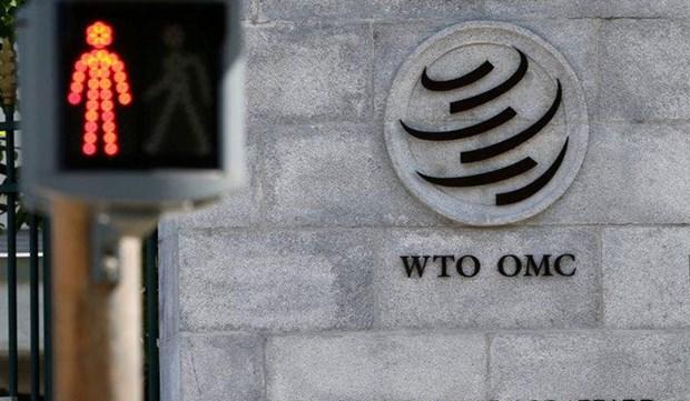 WTO: Những vấn đề cần giải quyết sau chặng đường 25 năm