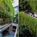 """<p> Ngôi nhà mang đến sự thoải mái cho chủ nhân, nơi họ có thể tận hưởng một """"khu vườn"""" mang đủ hương sắc Sài Gòn trong chính không gian của mình ...</p>"""
