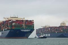 Vận tải biển và hiện tượng Shipageddon