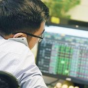 Chứng khoán Rồng Việt muốn mua tối thiểu 51% vốn quỹ Việt Long