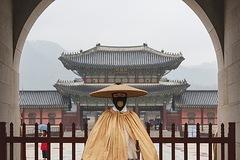 Hàn Quốc ghi nhận số ca Covid-19 cao chưa từng thấy trong 8 tháng