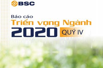 BSC: Triển vọng ngành quý IV/2020